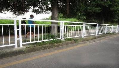 乐清一男子撞毁护栏还逃逸!被罚....